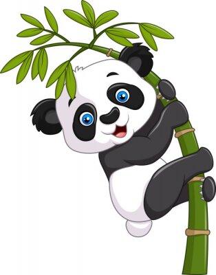 Poster Netter lustiger Babypanda, der auf einem Bambusbaum hängt