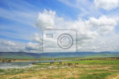 Ngorongoro Kraterlandschaft. Tansania, Afrika