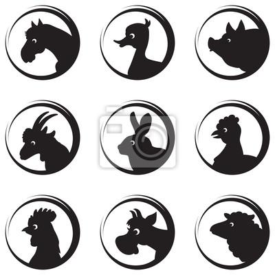 Nutztiere und Vögel Vektor-Silhouette icon set