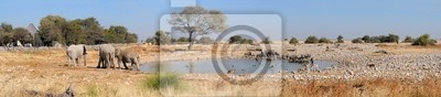 Okaukeujo Wasserloch panorama 2
