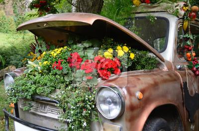 Ökologie, Blumen unter der Motorhaube eines alten Autos