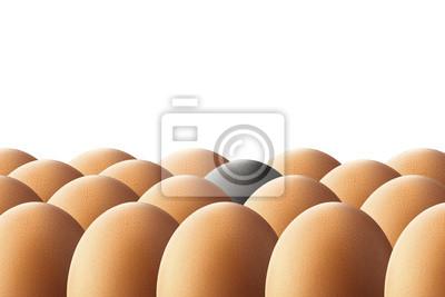 One black egg. Uniqueness concept