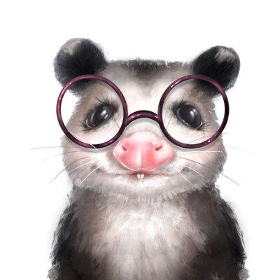 Poster Opossum illustration. Cute animal portrait isolated on white