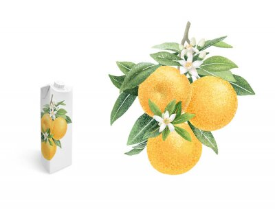 Poster Orange branch with fruits and flowers hand draw illustration