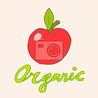 organic fruits (apple) vector illustration, hand drawn
