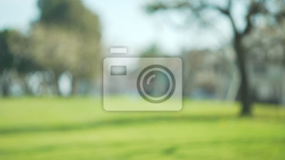 Poster Out of focus background plate of grass field in beautiful park in suburb