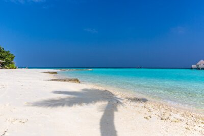 Palm tree shade in a white sand beach, perfect paradise destination in Maldives. Blue sky day, summer feeling.