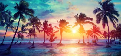 Poster Palm Trees Silhouettes On Tropical Beach At Sunset - Modern Vintage Colors