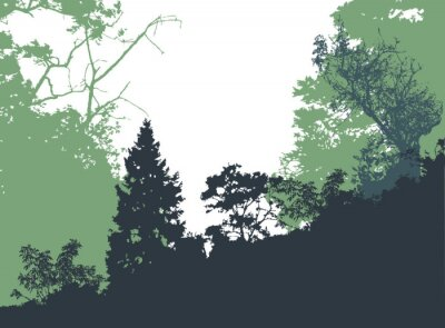 Poster Panoramic forest landscape with silhouettes of trees