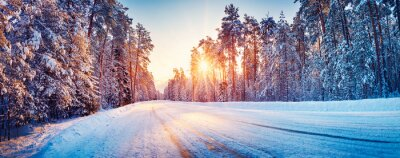 Poster Panoramic view of the beautiful rural road in winter