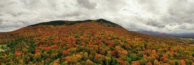 Poster Peak Foliage - Vermont