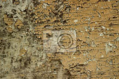 Poster Peeling Holz Textur