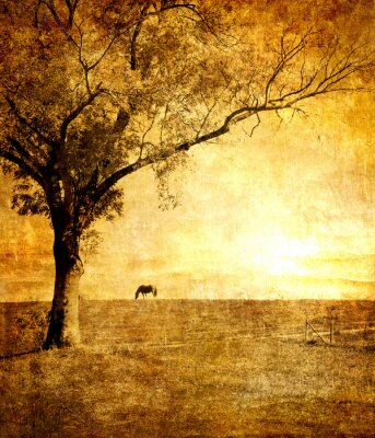 Pferd auf Sonnenuntergang - getönten Bild im Retro-Stil