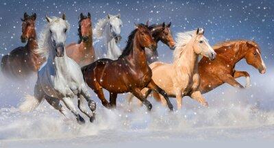 Poster Pferdeherde laufen schnell im Winter Schneefeld