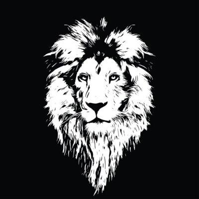 Poster Portrait eines schönen Löwes, Löwe im Dunkeln