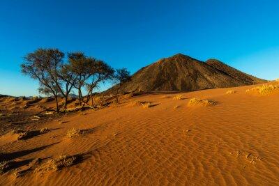 Red sand dune and black rocky kopje