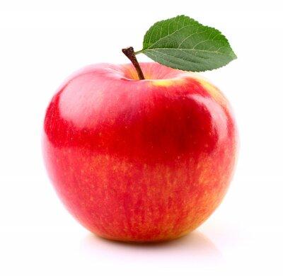 Poster Reifer Apfel mit Blatt