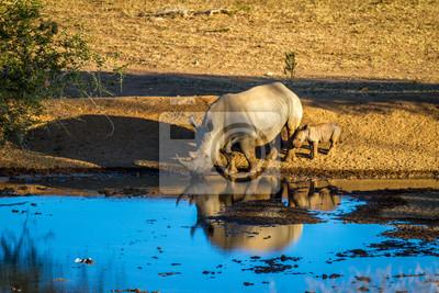 Reino und ein Baby Trinkwasser in Nord-Namibia, Afrika