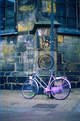 rosa Fahrrad