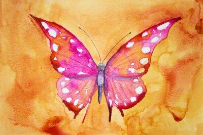 Poster Rosa Schmetterling mit orangefarbenen Hintergrund. Die Abtupftechnik ergibt einen weichen Fokuseffekt aufgrund der veränderten Oberflächenrauhigkeit des Papiers.