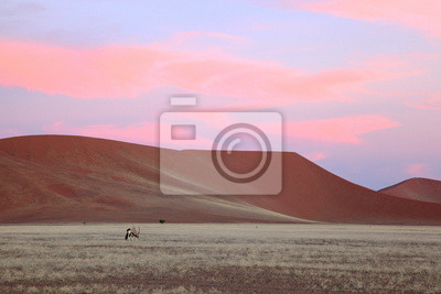 Rosa Sonnenuntergang Wolken über roten Namib-Dünen