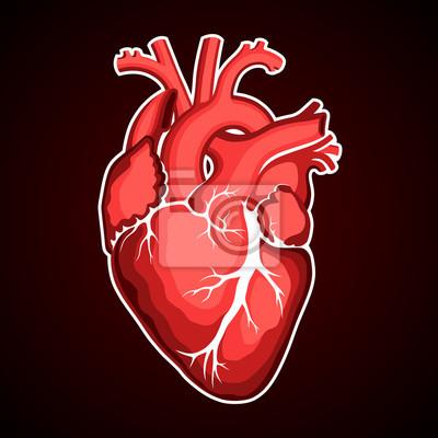Rotes menschliches herz wandposter • poster Rhythmus, nubes, EKG ...