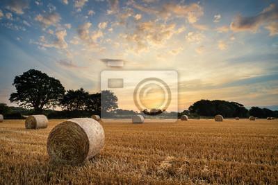 Poster Rural landscape image of Summer sunset over field of hay bales