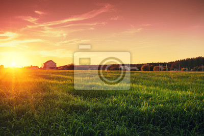 Poster Rural landscape with beautiful gradient evening sky at sunset. Green field and village on horizon