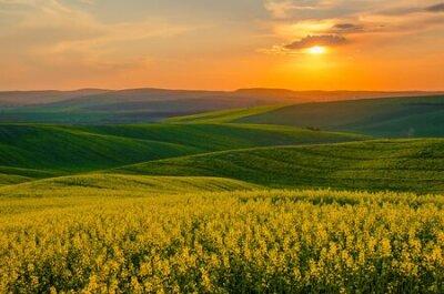 Poster Rural spring landscape