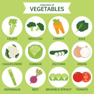 Poster Sammlung von Gemüse, Lebensmittel Vektor-Illustration, Icon-Set auf