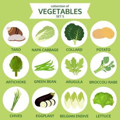 Poster Sammlung von Gemüse, Lebensmittel Vektor-Illustration, Icon Set thr