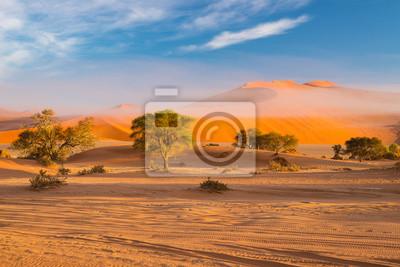 Poster Sanddünen in der Namibwüste im Morgengrauen, Roadtrip im wunderschönen Namib Naukluft Nationalpark, Reiseziel in Namibia, Afrika. Morgenlicht, Nebel und Nebel.