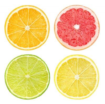 Poster Scheiben von Zitrusfrüchten auf weißem