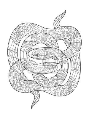 Schlange Ausmalbilder Für Erwachsene Vektor Wandposter