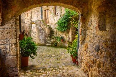 Poster Schmale Straße der mittelalterlichen Tuff-Stadt Sorano mit Bogen, grüne Pflanzen und Kopfsteinpflaster, Reise Italien Hintergrund