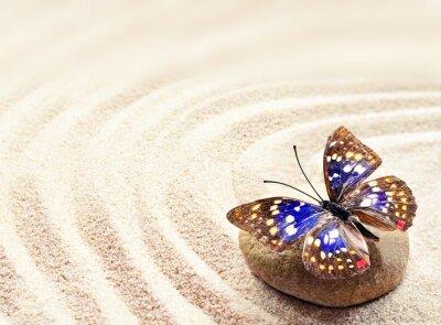 Poster Schmetterling auf Sand