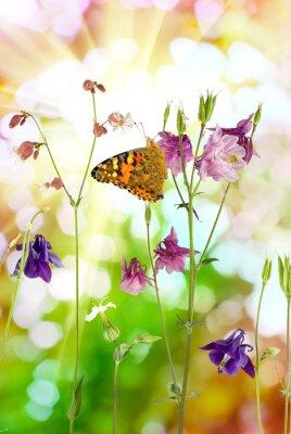 Poster Schmetterling und Blumen im Garten Nahaufnahme