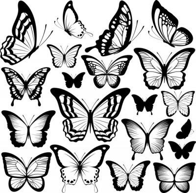 Poster Schmetterlinge schwarze Silhouetten