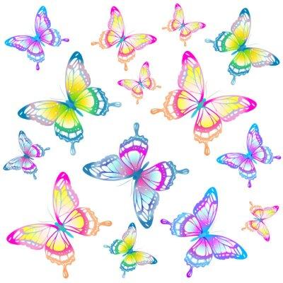 Poster Schmetterlingsentwurf