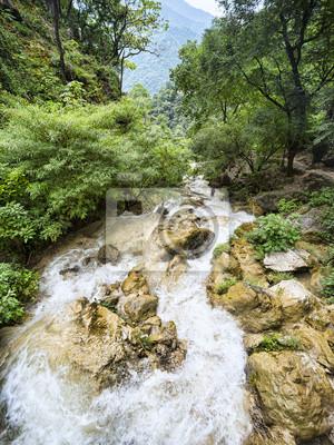 Schnelle Berg-Fluss fließt unter üppigen grünen Wald