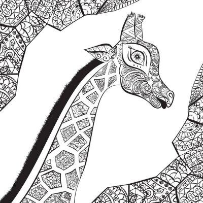 Poster Schöne erwachsene Giraffe. Hand gezeichnet Illustration der ornamentalen Giraffe. Isoliert Giraffe auf weißem Hintergrund. Der Kopf einer ornamentalen Giraffe