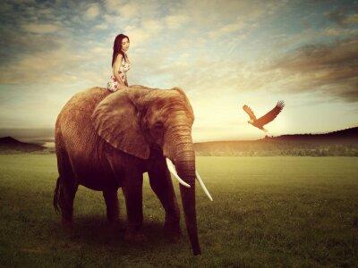 Poster Schöne Frau sitzt auf einem Elefanten