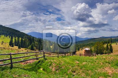 Schöne Sommerlandschaft in den Bergen im Sommer