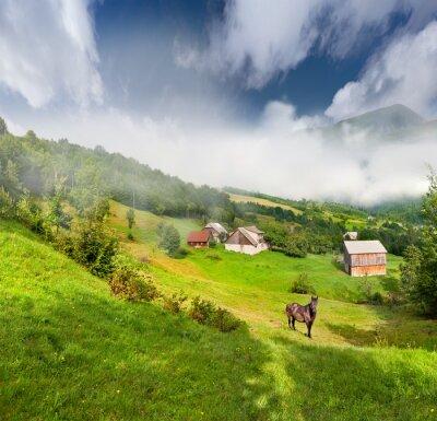 Schöne Sommerlandschaft mit einem Pferd in das Dorf in mounta