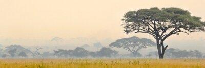 Poster Schöne Szene des Serengeti Nationalparks