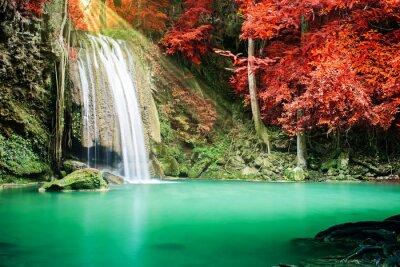 Poster Schöne Wasserfall im Herbst Wald