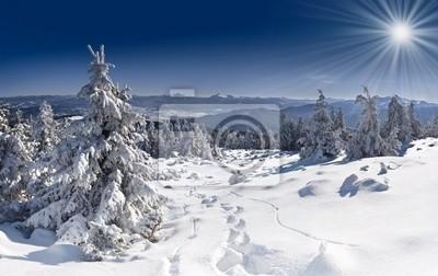 Schöne Winterlandschaft in den Karpaten