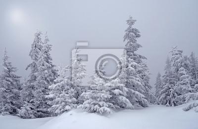 Schöne Winterlandschaft mit Nebel im Mondschein in der Karpfen