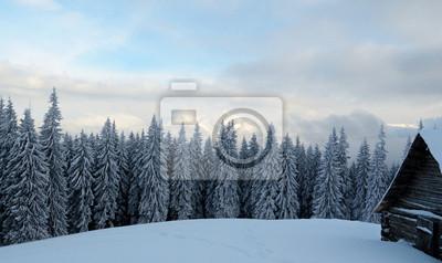 Schöne Winterlandschaft mit Nebel in den Karpaten,