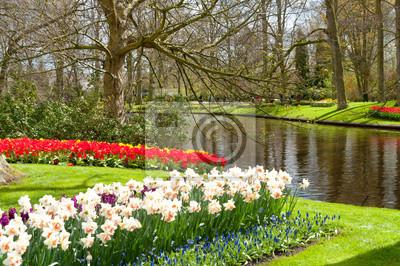 Schöner Frühling Blumen im Keukenhof Park in Niederlande